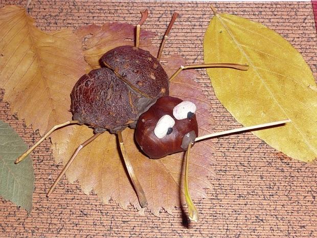 Поделки с каштанами и листьями 570